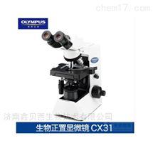 CX31奥林巴斯双目生物显微镜