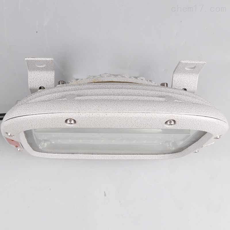 HRD93-50w户外护栏式防爆LED泛光路灯EX