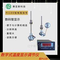 数显仪表XMT-RS485配Pt100