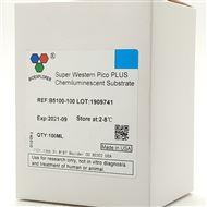 B5100-100BIOEXPLORER 超敏ECL化学底物发光液