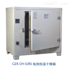 HGZN-20电热恒温干燥箱(GZX-DH.260-TBS)