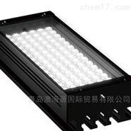 LDL2系列LED光源日本進口CCS
