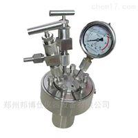 小型不銹鋼高壓反應釜