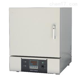 SX2-6-12TP箱式电阻炉