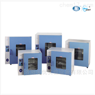 GRX-9013A热空气消毒干燥箱