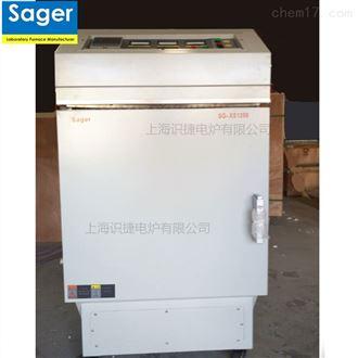 SG-XS10001000度陶瓷纤维炉膛 高温箱式电阻炉