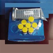 猪流感病毒A(FLU A)ELISA试剂盒