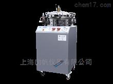 FY50型反压高温蒸煮锅