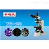三目偏光显微镜