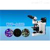 三目透反射偏光显微镜