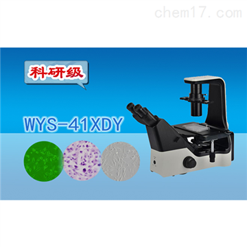 WYS-41XDY科研级倒置荧光显微镜