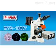 科研級三目熒光顯微鏡