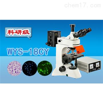 WYS-18CY科研级三目荧光显微镜