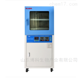 DZF-6210S真空干燥箱