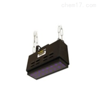 PM-1600大面积LED紫外线探伤灯