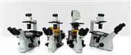 XD系列倒置生物显微镜