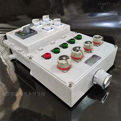 BXMD防爆照明动力配电箱带插销5孔