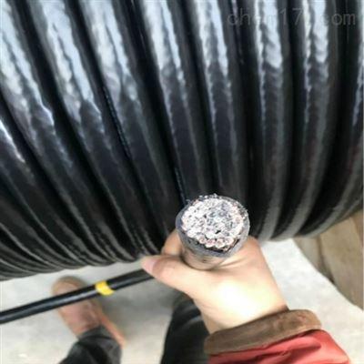 WDZBN-YJY22阻燃耐火低烟无卤电力电缆