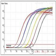 半定量RT-PCR实验服务