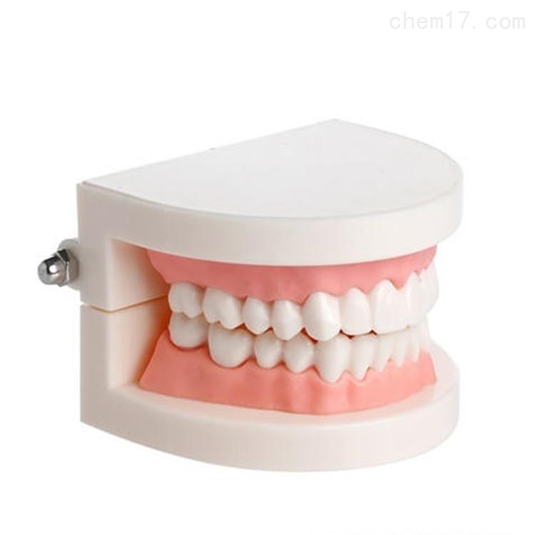 环保加成型牙模液态硅胶