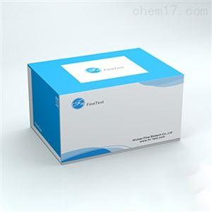 ERB0004兔白细胞活化黏附因子(ALCAM)elisa试剂盒