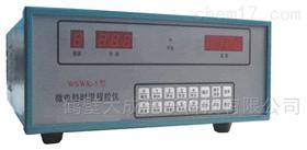 WSWK-5微电脑时温程控仪