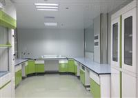 实验室家具 全钢药品柜厂家