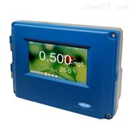E600壁挂式恒电位余氯仪泳池余氯分析仪