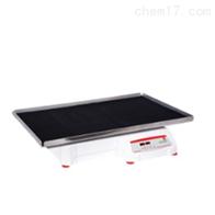 SHHD6825DG68kg数显控制圆周式摇床