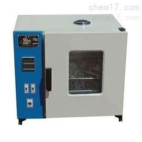 DGF402B电热恒温鼓风干燥箱厂家
