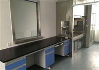 优质实验室家具批发 实验台通风柜