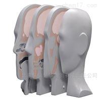 MODEL 731-HN质子治疗头部剂量模体