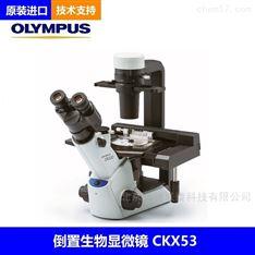 奥林巴斯CKX53显微镜