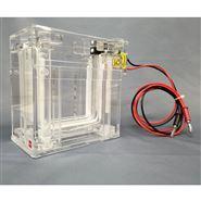 Phos-tag™ 预制胶配套电泳槽EasySeparator