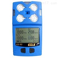 恩尼克思气体检测仪-GS40