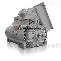 意大利Ansaldo(Nidec )同步电动机GH225