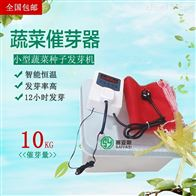 SC-10蔬菜种子催芽器价格