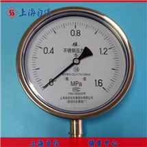Y-150BFZ压力表