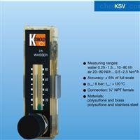 小流量塑料转子科宝流量计KSV1301