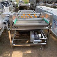 二手3米-6米果蔬食品级气泡清洗机