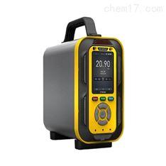 化工企业大气恶臭气体分析仪