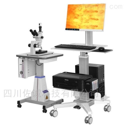 ZL102型(连续变倍)甲襞微循环检测仪