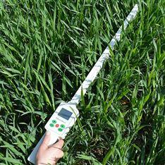 植物冠层图像分析仪器