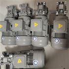 RV040/15-DZ+0.25KW广东中山自动化设备用涡轮减速电机RV040