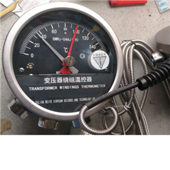 BWY2-804AJ(th)变压器油面温控器