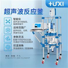 上海滬析HX-CF5超聲波反應釜