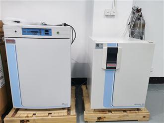 3111型二手二氧化碳培养箱