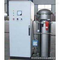 BH-500G污水脱色臭氧发生器
