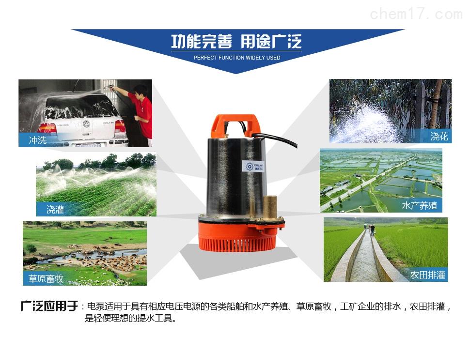 ZQB直流潜水泵应用结构图.jpg