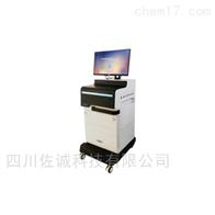 ABE-VI型经络导平/智能通络治疗仪
